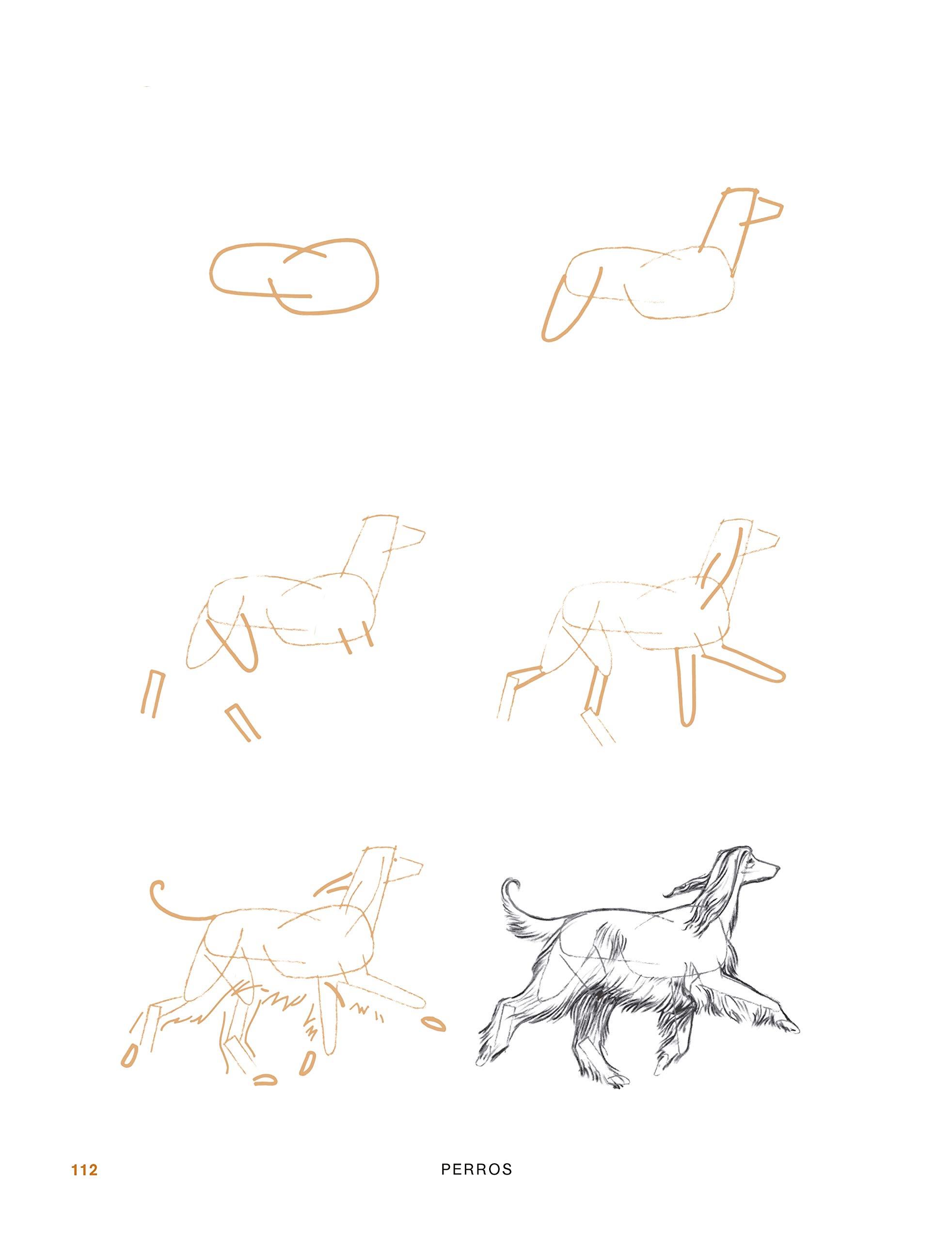 DIBUJAR 200 ANIMALES: Aprende a dibujar paso a paso caballos ...