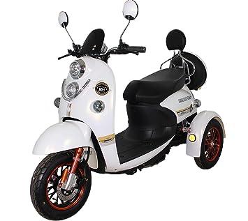 Green Power Scooter electrico de Movilidad Moto Para Personas Mayores | Recreativo adulto 3 ruedas hasta 25 km/h 60V 100AH 600W Blanko: Amazon.es: Salud y ...