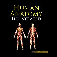 HUMAN ANATOMY ILLUSTRATED