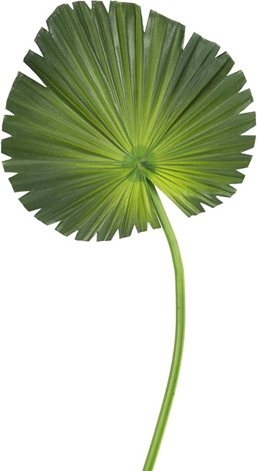 artplants.de Hoja de Palma Ventilador Artificial, Ø 20cm, 62cm ...