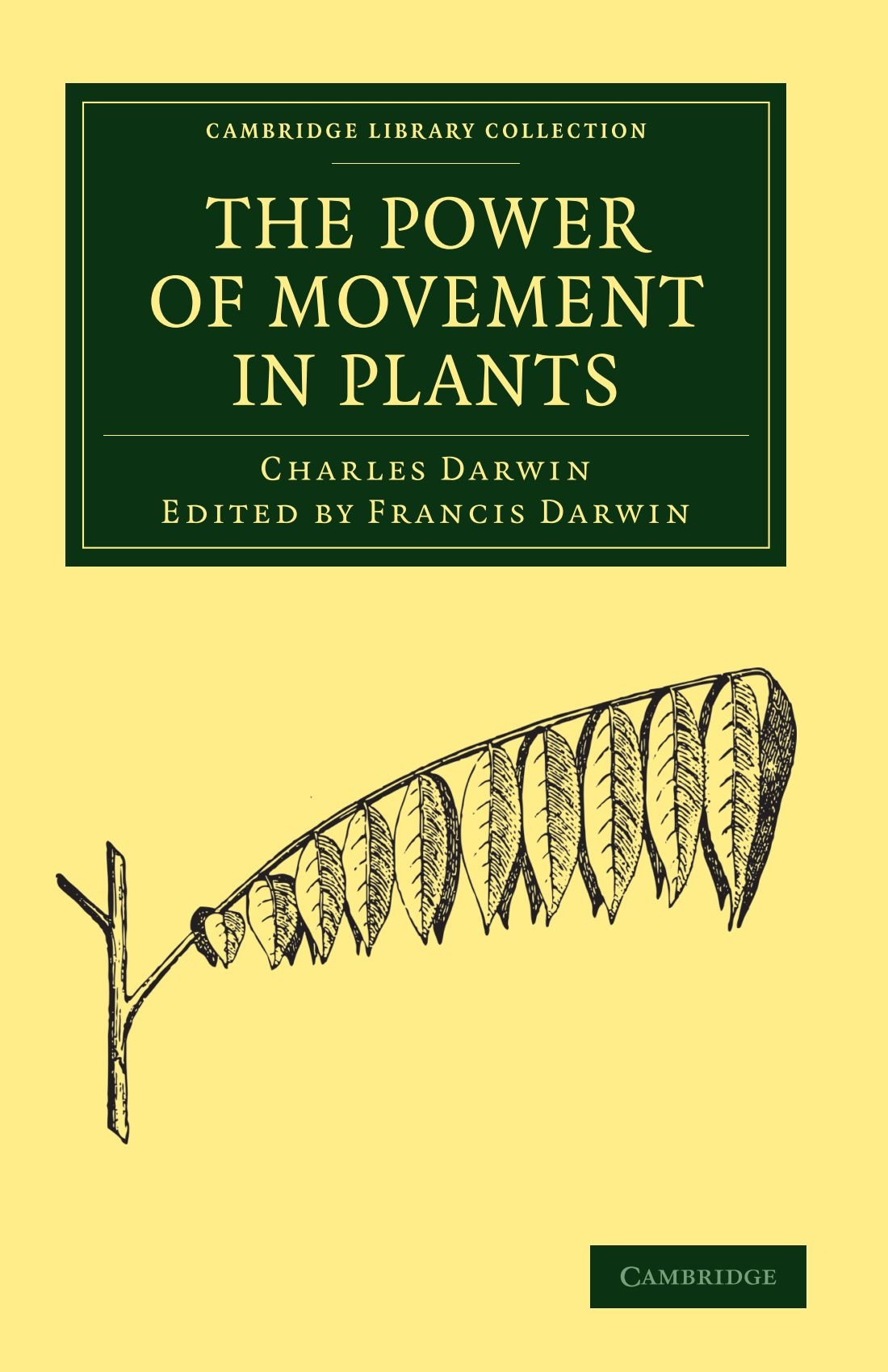 Download The Power of Movement in Plants (Cambridge Library Collection - Darwin, Evolution and Genetics) pdf