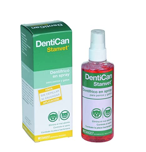 Stangest Dentican Spray Dental - 125 ML