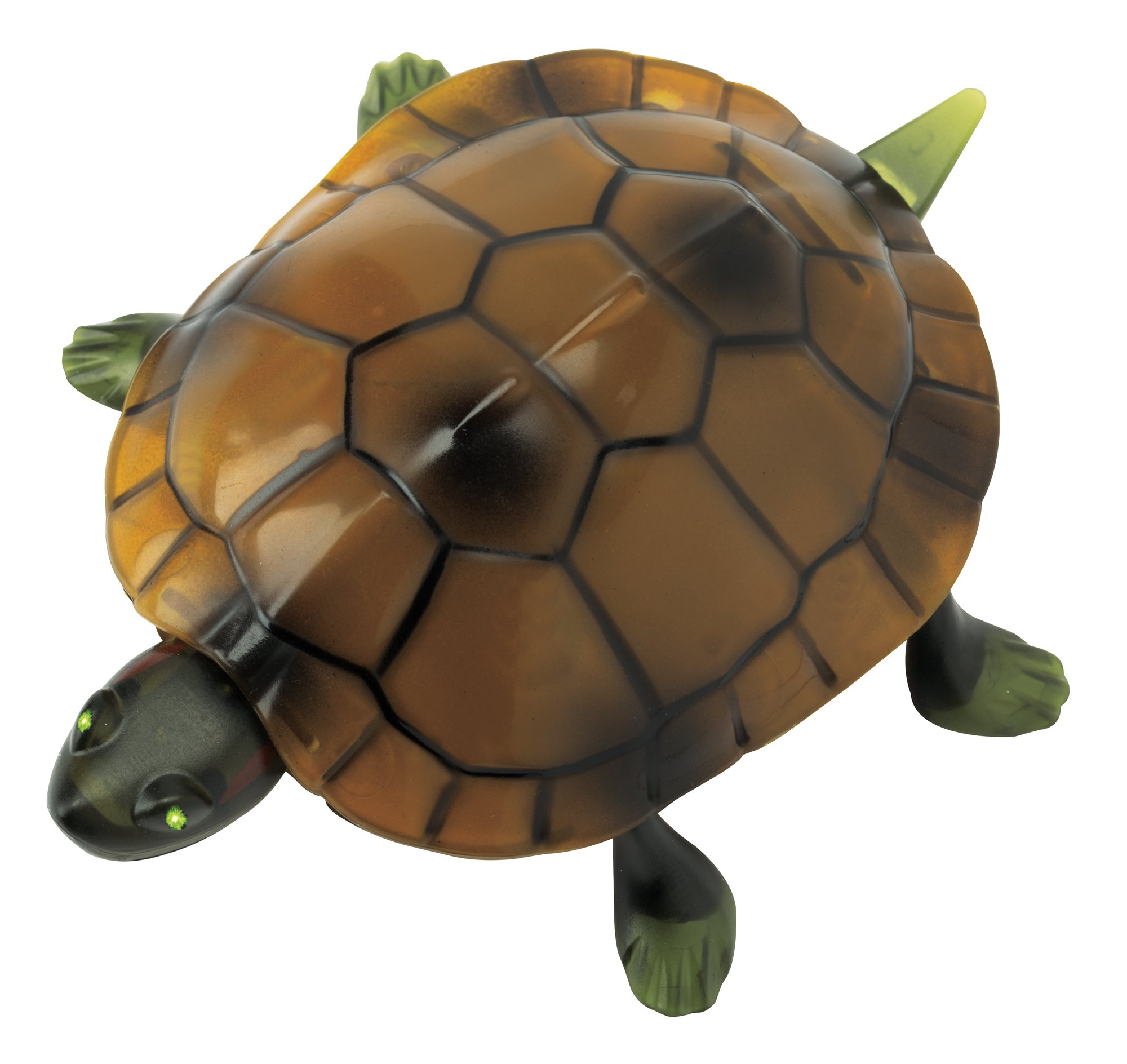 The Paragon Remote Control Turtle - RC Animal Toy, Turtle Toy for Kids and Adults by The Paragon (Image #5)