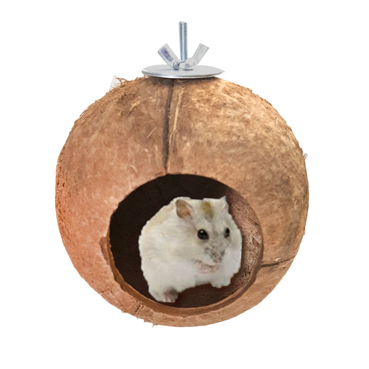 feeder you en product me hamster and shop petco petcostore bottle center water universal