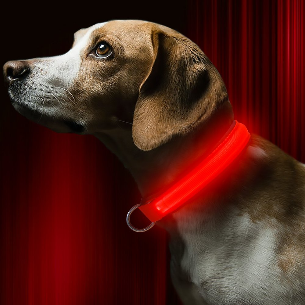 Red Small  11.8-15.3 inches   29.97-38.86 cm Red Small  11.8-15.3 inches   29.97-38.86 cm BSEEN LED Dog Collar USB Rechargeable Light Up Safety Pet Collar with 2 Glowing Modes Adjustable Soft Nylon Webbing Great for Small Medium Large Dogs (Small, Red)
