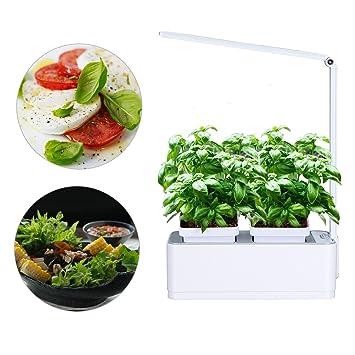 Smart Herb Garden Grower Kit, Pathonor 2 Detachable 18 Pots Seeds DIY  Educational Self Watering