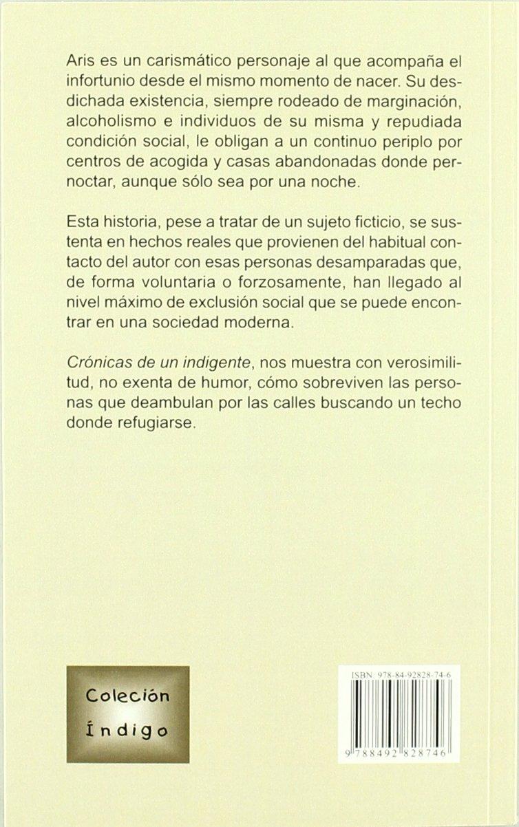 Crónicas De Un Indigente (Índigo): Amazon.es: Francisco Henares Redondo: Libros