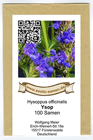 Samen Hysoppus officinalis Ysop pink 100