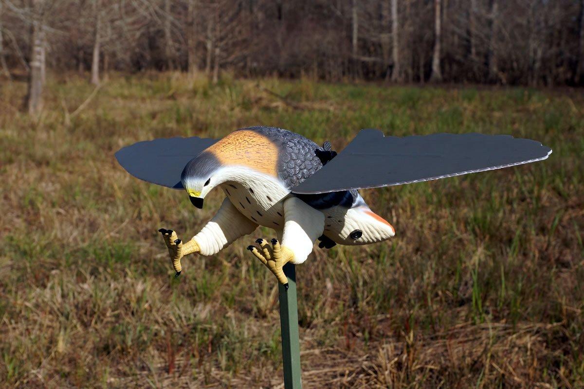 Mojo Outdoors Hawk Decoy