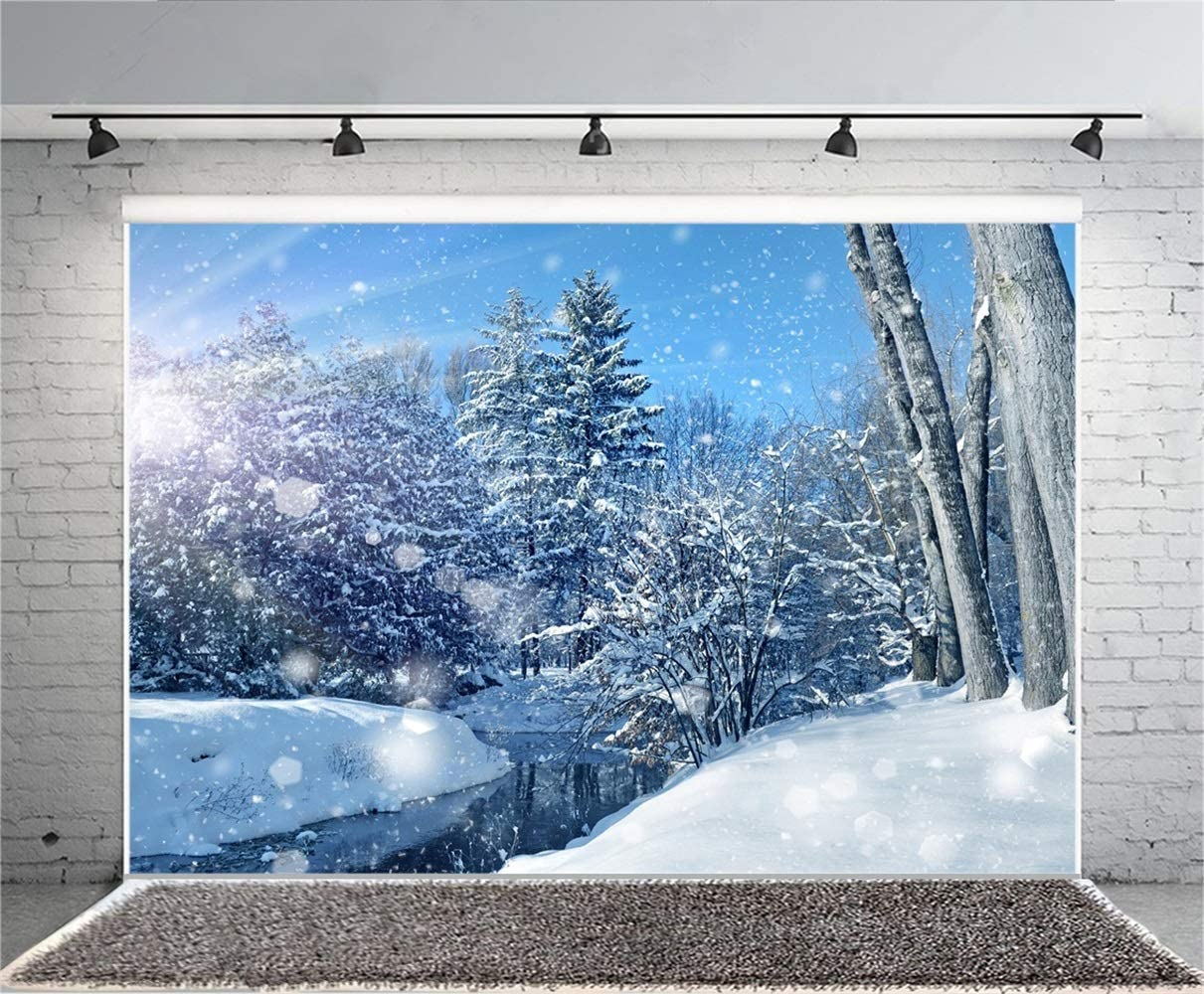 Winter Snowscape Backdrop 10x7 Vinyl Sunshine Frosty Pine Trees Snowy Forest River Haloes Scene Photography Background Winter Scenic Backdrop Kids Baby Shoot Poster Indoor Decors Wallpeper