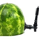 Watermelon Tap Kit, Watermelon Drink Dispenser Pumpkin Dispenser, Watermelon Keg Tap Drink Spigot, Watermelon Spigot…