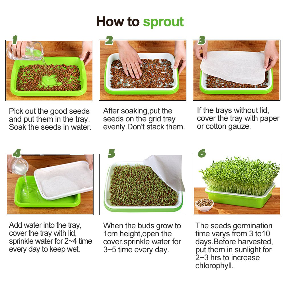 Seed Sprouter Trays with 4 Layers Shelf Soil-Free Healthy Wheatgrass Seeds Grower & Storage Trays for Garden Home by LeJoy Garden (Image #8)