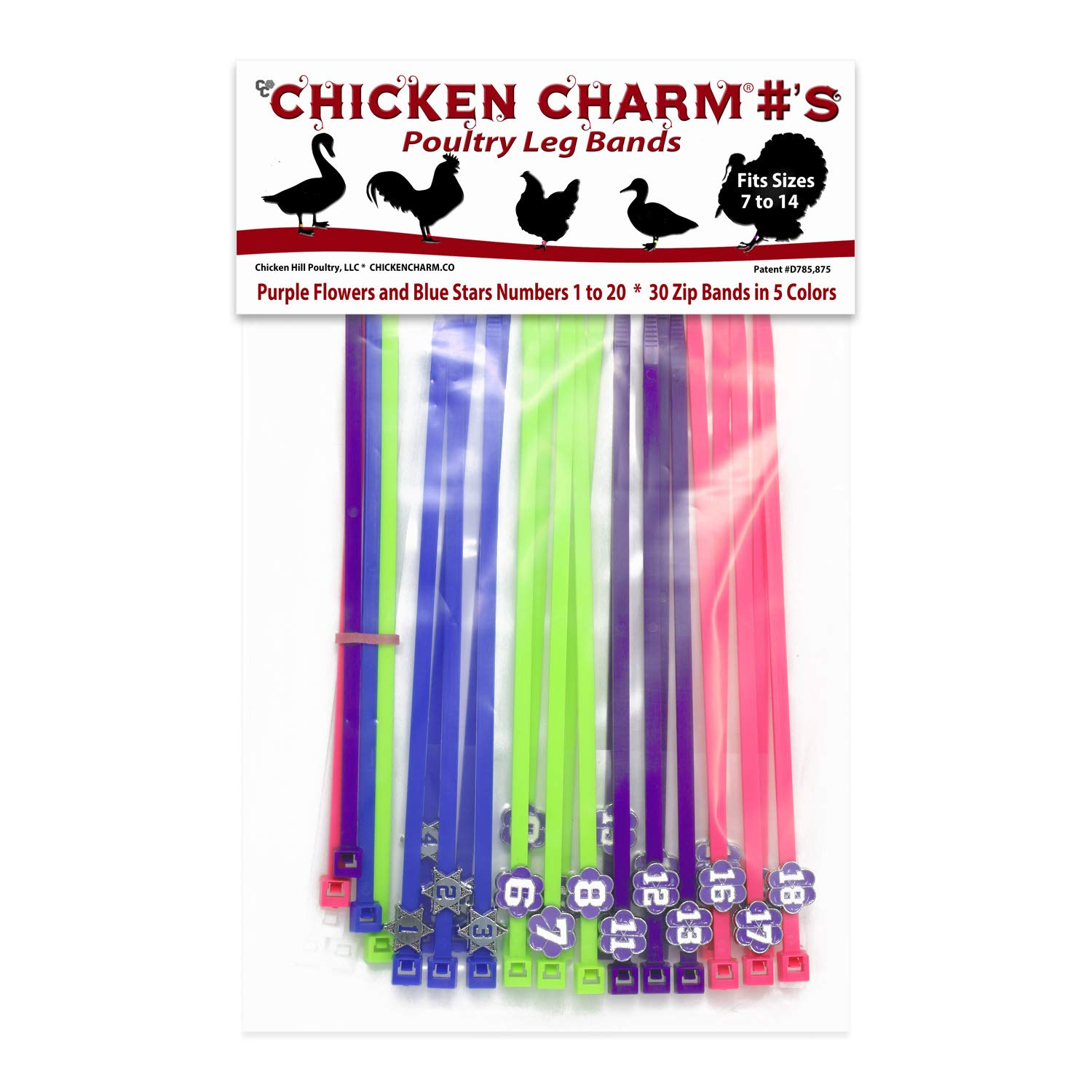Chicken Hill Numbered Poultry Leg Bands (Blue, Purple) by Chicken Hill