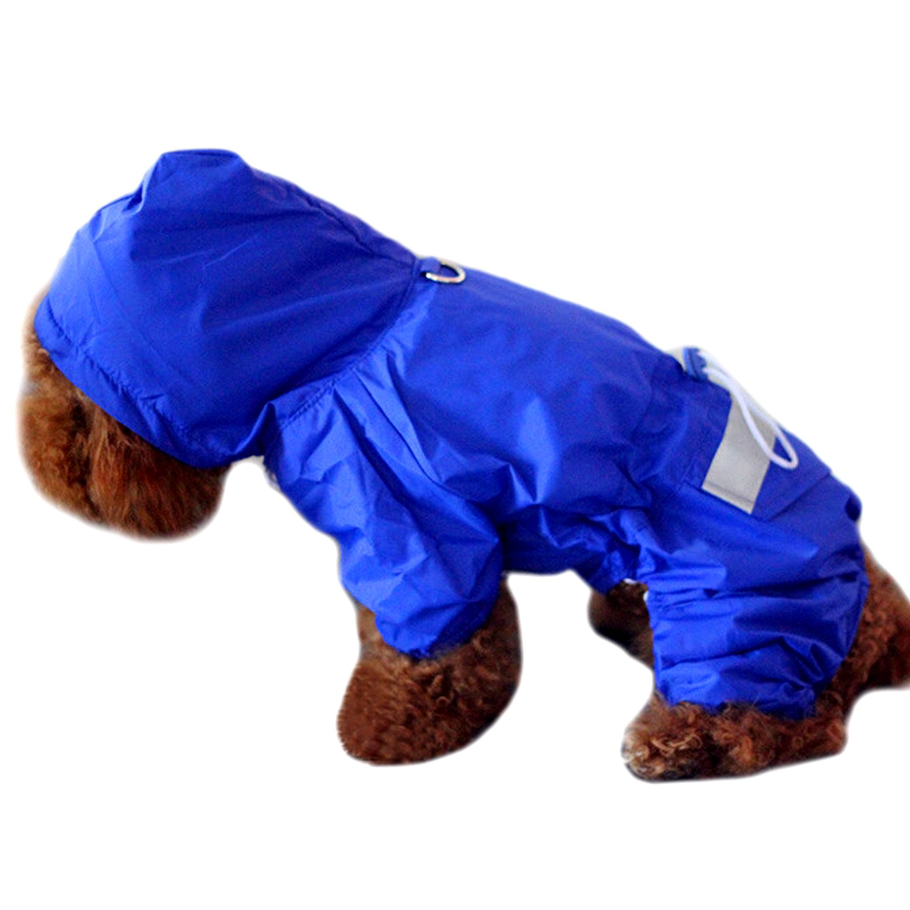 Alfie Pet by Petoga Couture - Willis Rainy Days Waterproof Raincoat (for Dogs and Cats) - Color: Blue, Size: Large