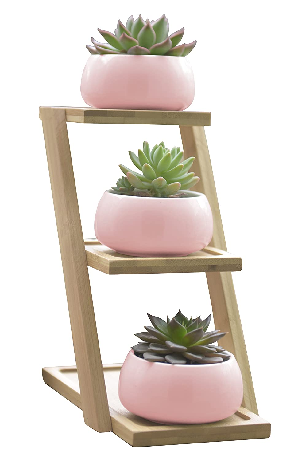 Succulent Plant Pot with 3 Tier Bamboo Display