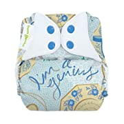 bumGenius Freetime All-in-One One-Size Snap Closure Cloth Diaper (Austen)