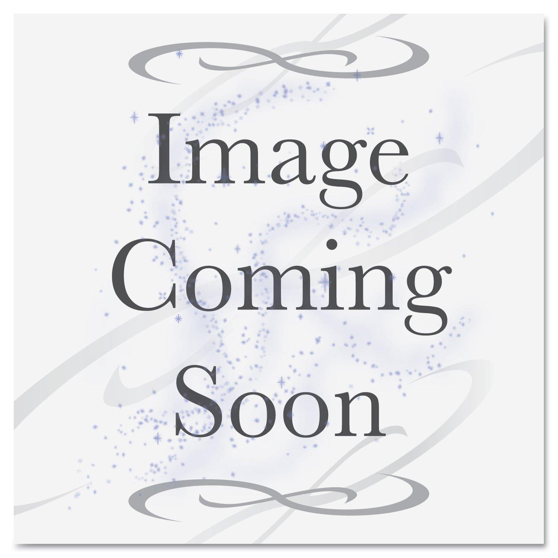 Epson C12C815331 REPLACEMENT PRINTER CUTTER BLADE,