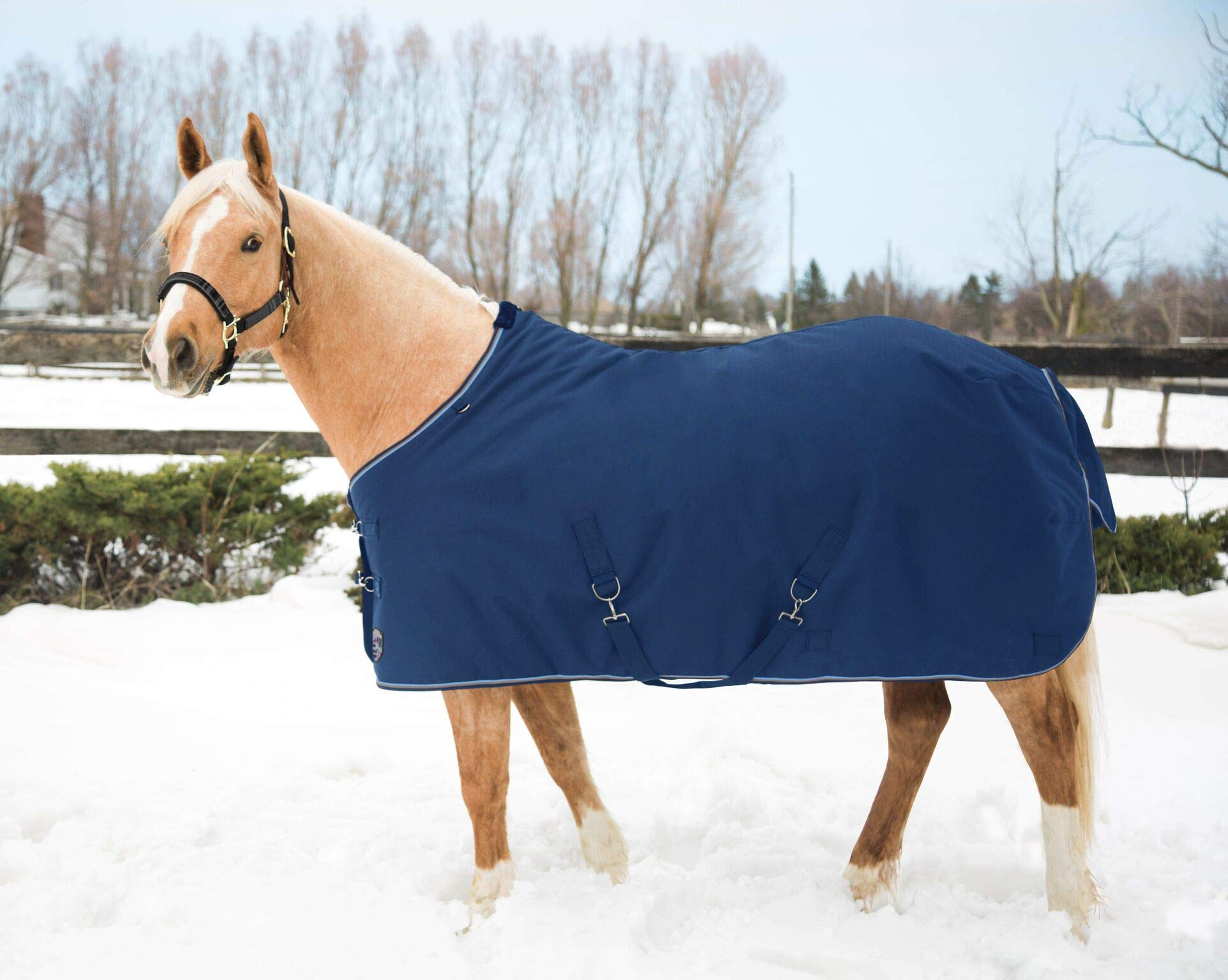 Kensington All Around 1200 Denier Light Weight Waterproof and Breathable Turnout 80g Blanket (Size 75, Kentucky Blue) by Kensington Protective Products