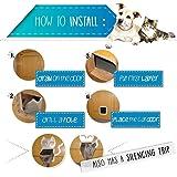 BIGWING Style Pet Flap Lockable 4 Way Locking Cat