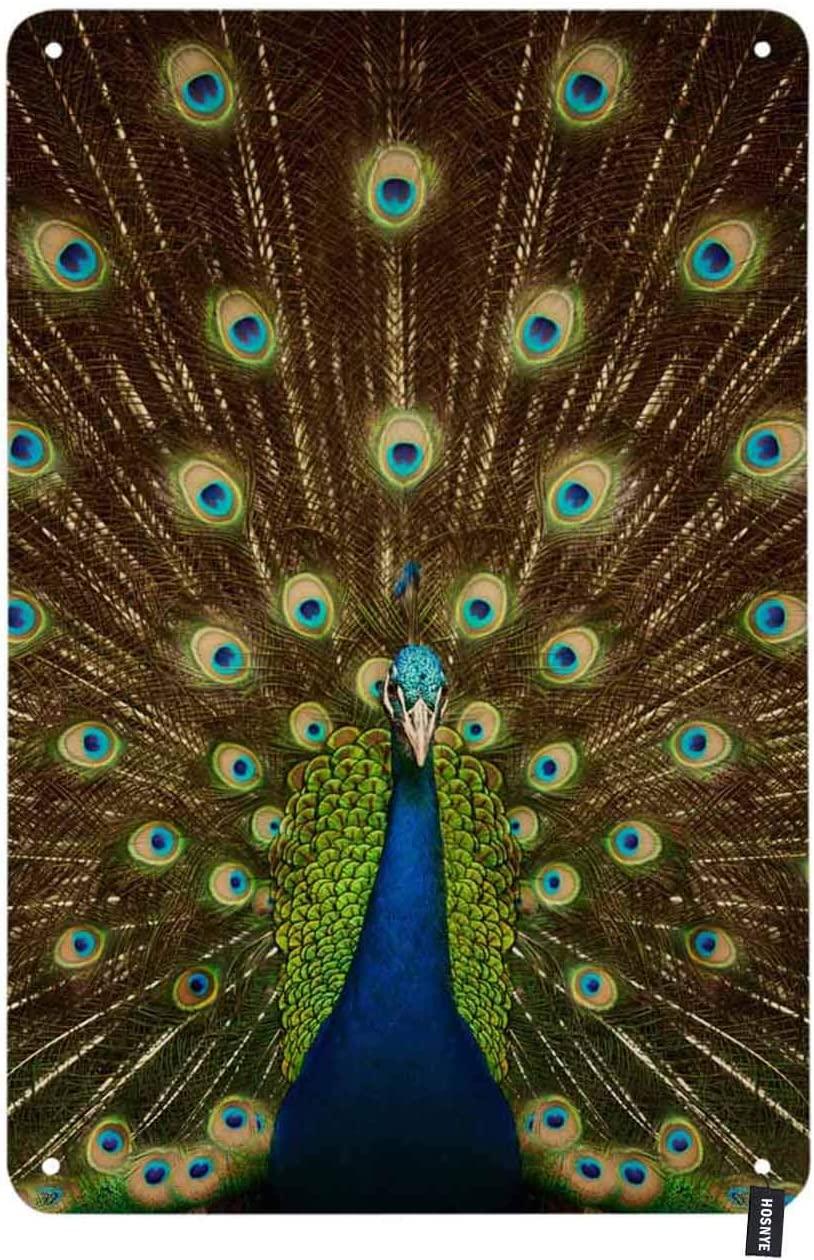 HOSNYE Peacock Tin Sign Elegance Animal with Green Feather Flaunting Its Tail Vintage Metal Tin Signs for Men Women Wall Art Decor for Home Bars Clubs Cafes 8x12 Inch