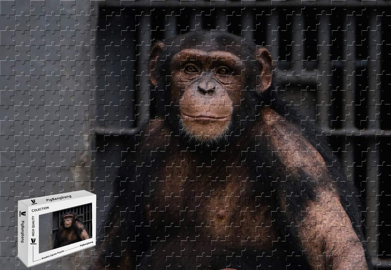 【誠実】 PigBangbang、29.5 X 大人用 19.6インチ、ステンドアートパズル 子供用 ジグソーグルー 大人用 X ジグソーグルー 木製 - チンパンジーの動物園 - 1000ピース ジグソーパズル B07H6CS5PZ, 渋谷IKEBE楽器村:011d0ad5 --- a0267596.xsph.ru