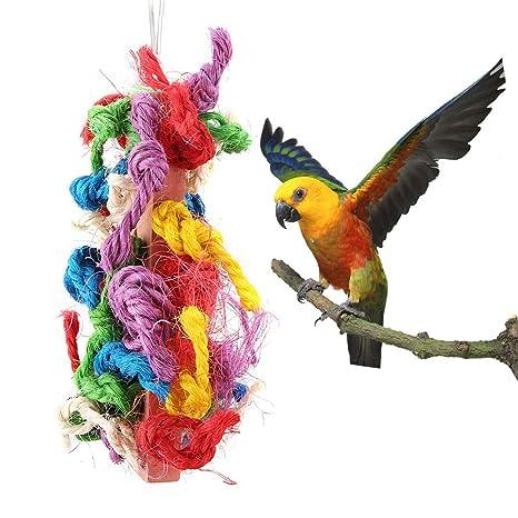 Loros Coloridos Masticar Cuerda Mascota Pájaro Sisal de Madera ...