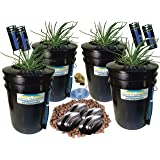 """The Atwater HydroPod - Standard (4 SITE w/ 8"""" Baskets) A/C Powered Dual DWC Deep Water Culture & Recirculating Drip Hydroponic Garden System Kit - 5 Gallon Size System"""