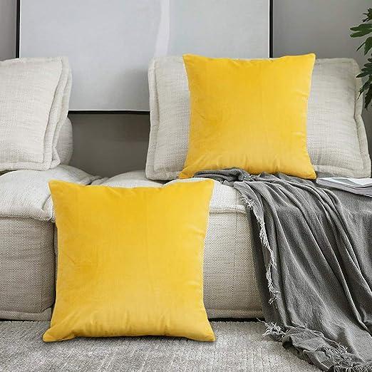 SPECOOL 2 Piezas Fundas Cojines de Terciopelo 45x45cm Fundas de Almohada Decoración con Cremallera Invisible para Sala de Estar, sofá, Dormitorio o ...