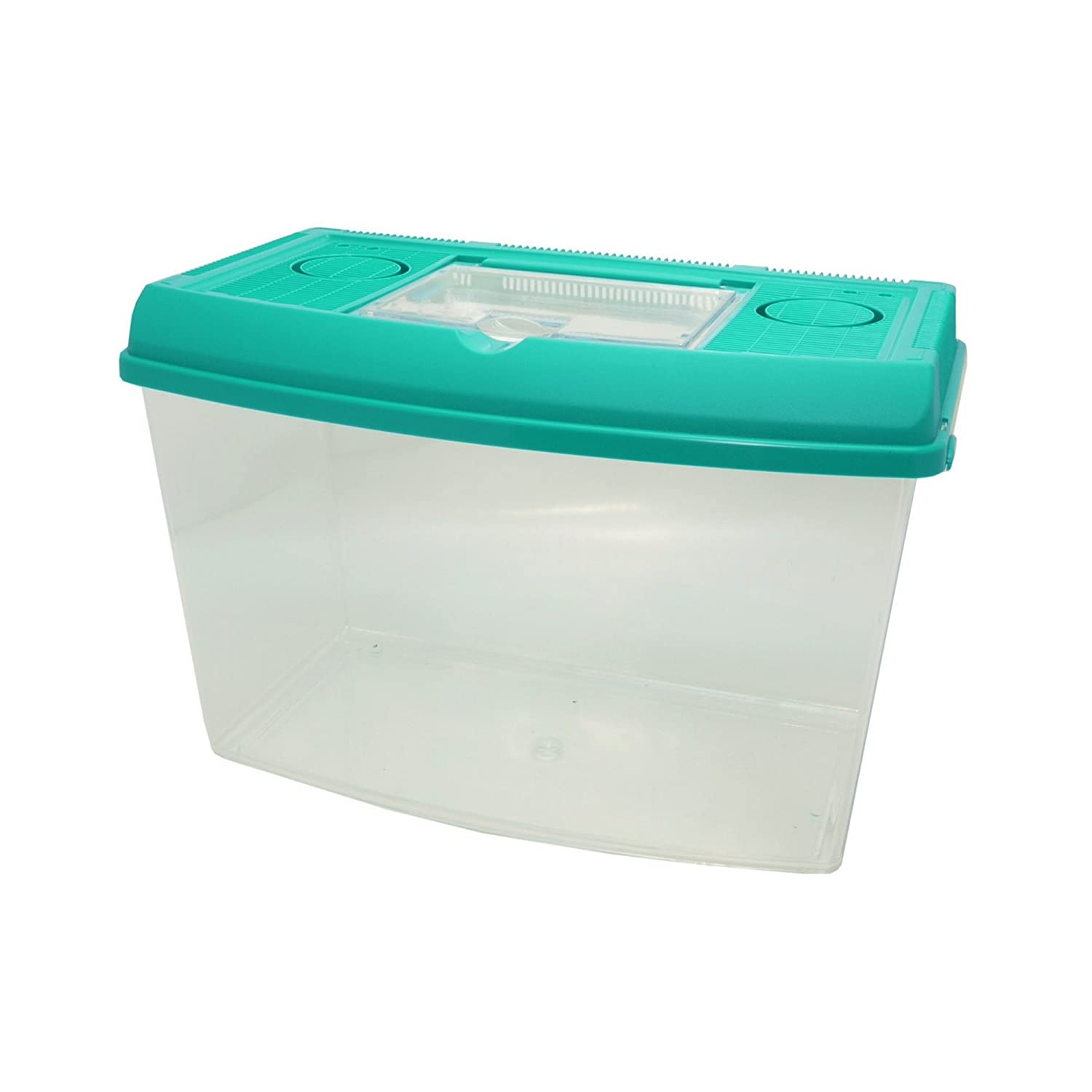 Assorted X-Large Assorted X-Large pinkwood Pet Keeper Plastic Pet Tank (Assorted colors) (X Large) (Assorted)
