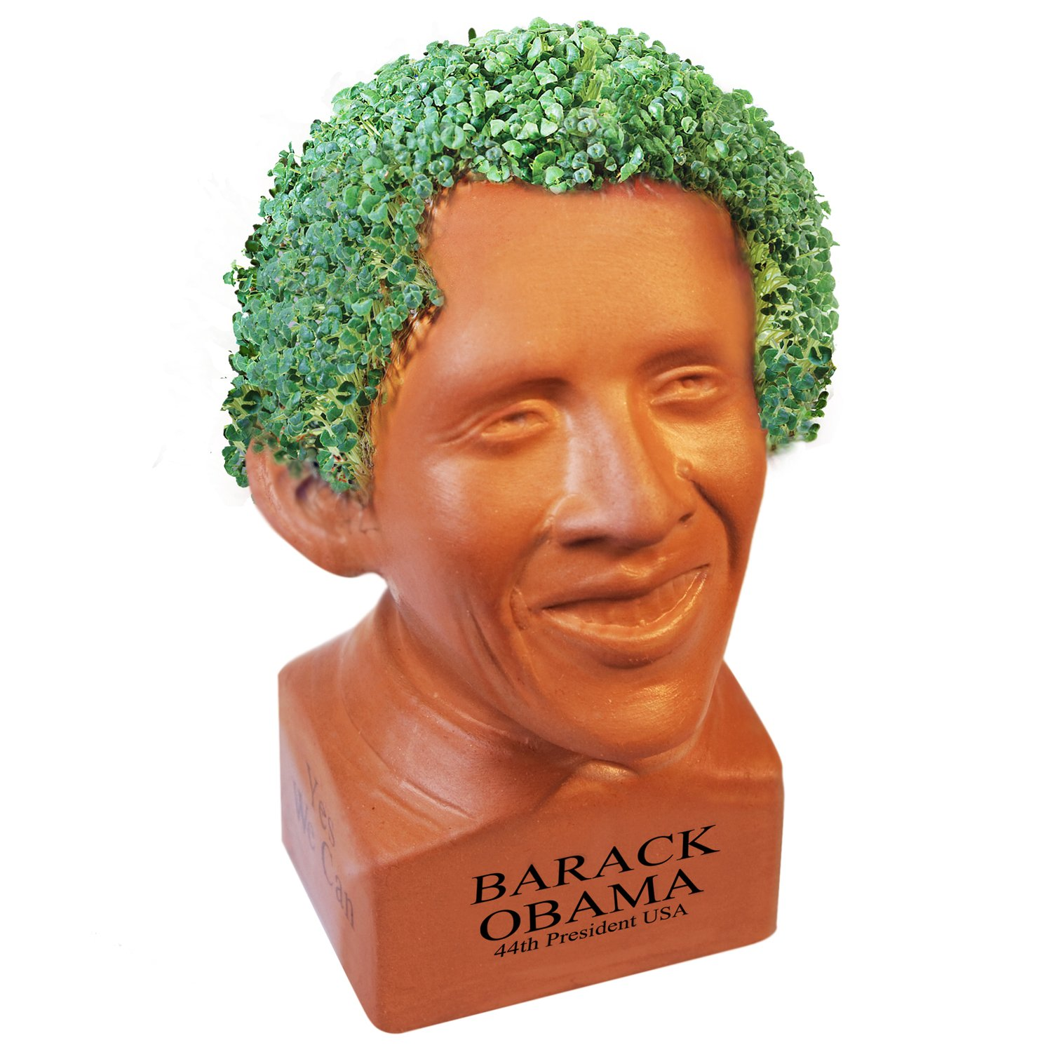 amazon com chia pet happy barack obama with seed pack, decorativeamazon com chia pet happy barack obama with seed pack, decorative pottery planter, easy to do and fun to grow, novelty gift, perfect for any occasion