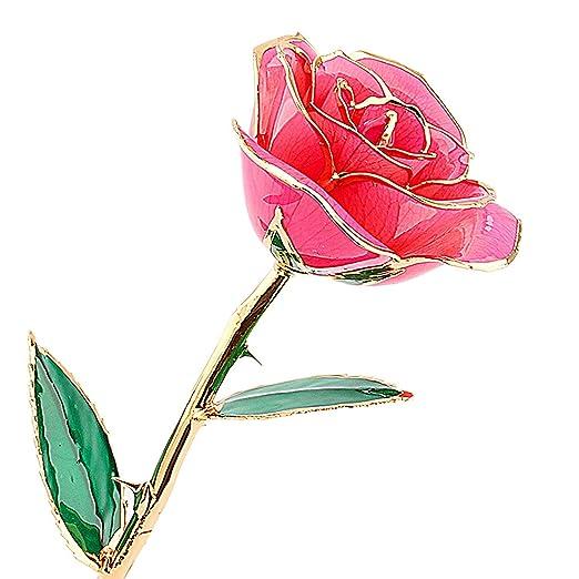 zjchao 24 K Rosa de Oro Rosa Flores Regalos para Las Mujeres ...