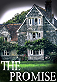 The Promise: A Riveting Mystery (Clyde Barker Paranormal Mysteries Book 1) (English Edition)