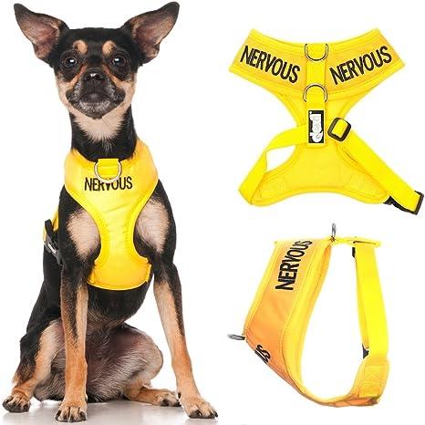 Arnés chaleco para perro, codificado amarillo (en inglés