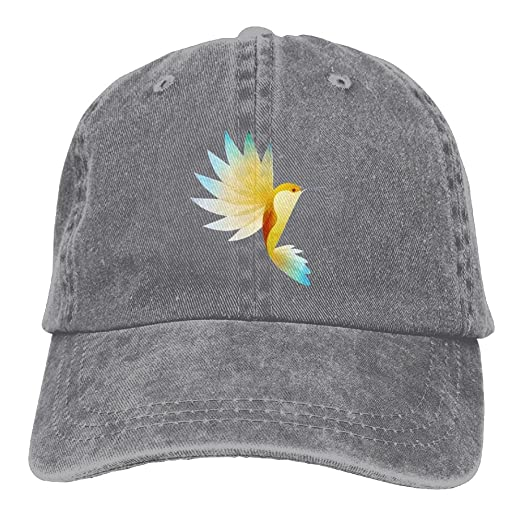 adae43340f8 Amazon.com  Hummingbird Baseball Caps Simple Low Profile Fitted Hats ...