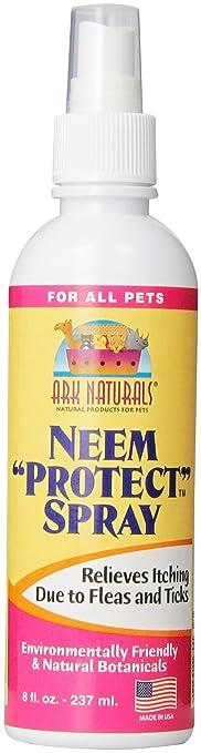 Neem for fleas
