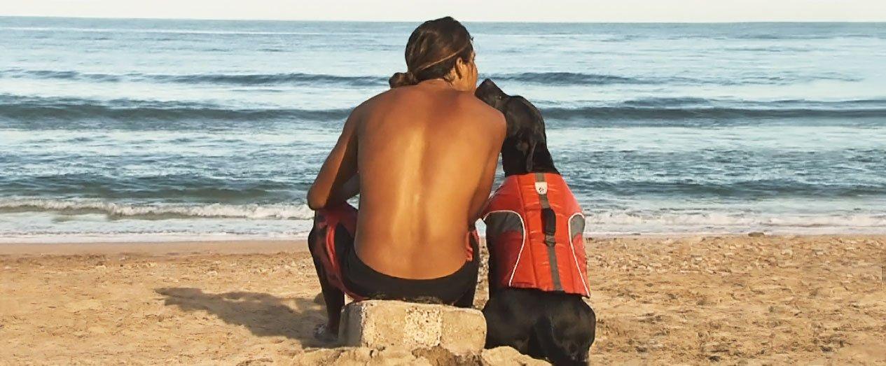 Canine Friendly Canine Lifejacket Large, Orange