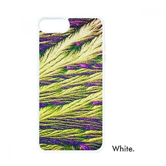 Amazoncom Reeds Cluster Feather Colour Wallpaper For