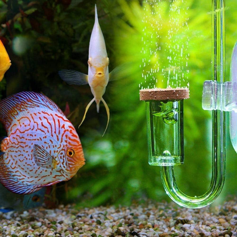 Amazon.com : Rockyin Acrylic Transparent CO2 Diffuser Atomizer Bubble  Counter for Aquarium Plants Water Grass : Pet Supplies