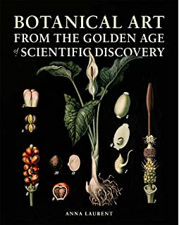 Botanical Art Through The Ages 9788854413177 Amazon Com Books