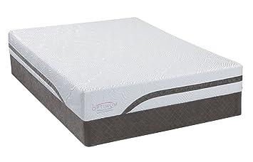 Amazon Com Sealy 50821931 Optimum Latex Dreams Cushion Firm Bed