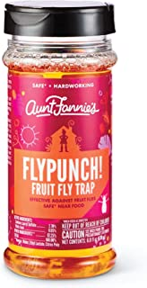 product image for Aunt Fannie's - FlyPunch Non-Toxic Fruit Fly Trap - Kill Fruit Flies - for Indoor Use (Single)