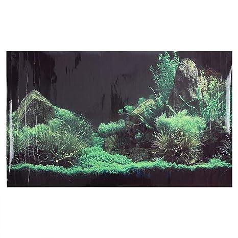 Haofy - Papel Pintado para Pared, diseño de pecera de Acuario con Piedra de césped