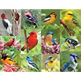 Springbok Alzheimer & Dementia Jigsaw Puzzles - Birds of a Feather - 36 Piece Jigsaw Puzzle - Large 18 Inches by 23.5 Inches Puzzle - Made in USA - Extra Large Easy Grip Pieces