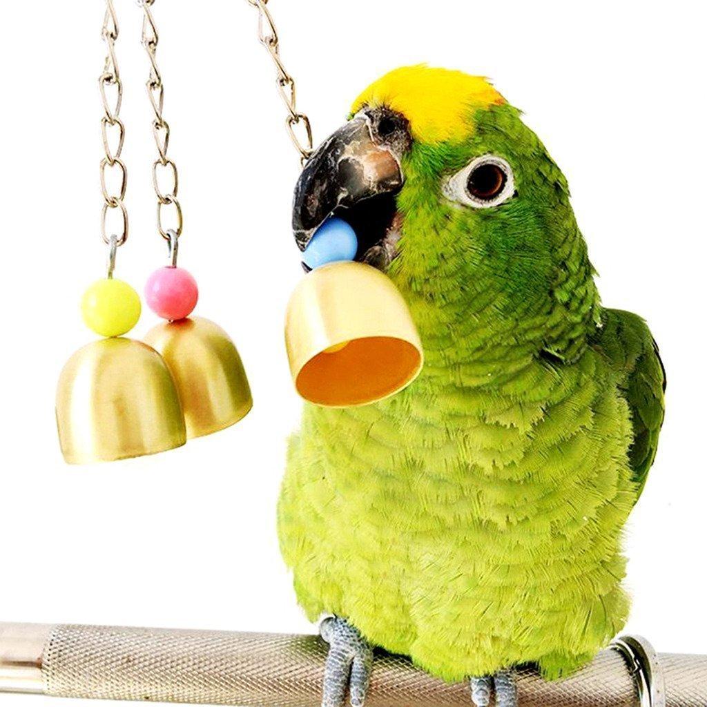 Elegant Wellensittich Töne Photo Of Vogelspielzeug, Glocken Aus Edelstahl Zum Aufhängen Im