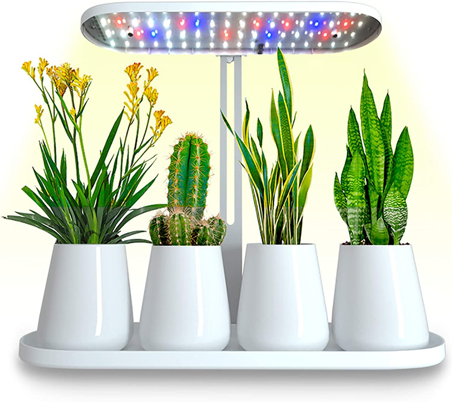 TWGDH Indoor Full Spectrum LED Kitchen Garden Germination Kit, Germination System with Height Adjustable LED Lamp,Automatic Timer (White)