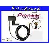 Pioneer CA-AN-DAB.001