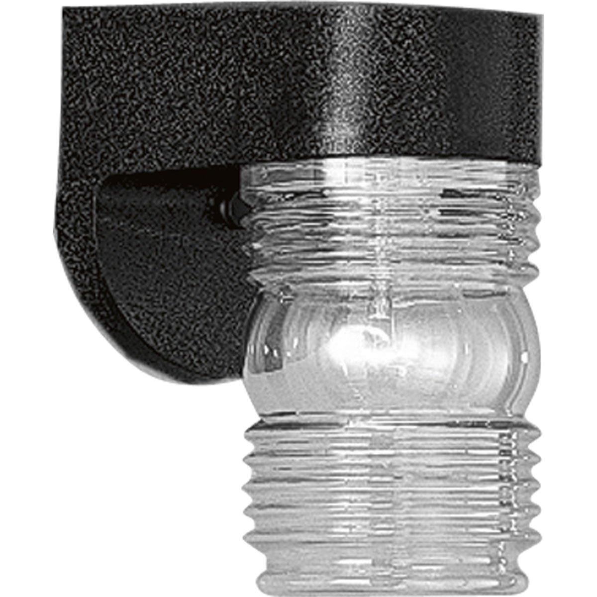 Progress Lighting P5612-31 Polycarbonate Clear Lexan Diffuser Black