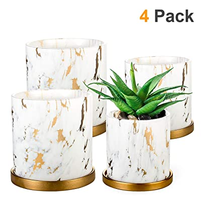 Plant Pots 4 Set, EHWINE 5.3 Inch 4.2 Inch Indoor Ceramic Plant Pots Marble Look Scrub Pots with Drainage Hole and Ceramic Tray for Succulents/Plants/Flowers: Garden & Outdoor