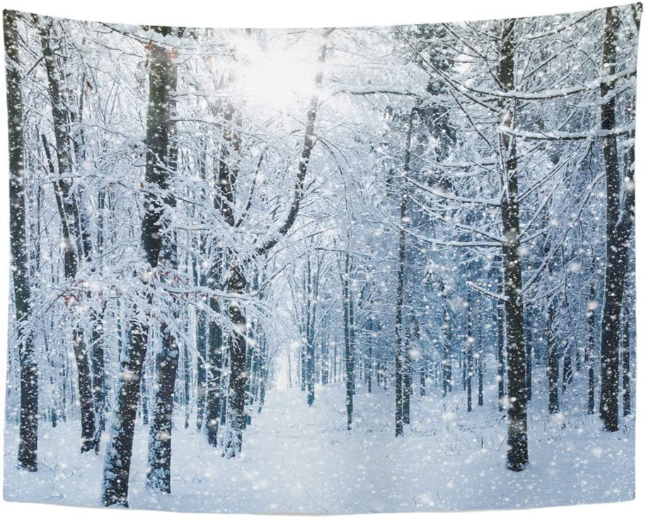 Emvency Tapestries Print 60x80 Inches Blue Snow Winter Landscape White Forest Falling Weather Snowy Magic Scene Cold Wall Hangings Home Decor