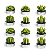 Decorative Cactus Tealight Candles Tea Light Candle Holder 12 Pcs for Birthday Party Wedding Spa Home Décor
